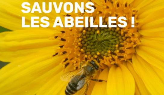 Sauvons les abeilles et les pollinisateurs