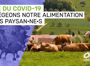 Covid19, agriculture et réforme de la PAC : Claude Gruffat et Benoît Biteau écrivent à Didier Guillaume