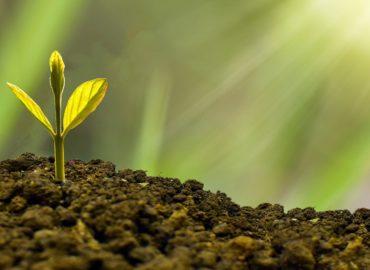 Faire de la transition écologique une vraie opportunité économique nécessite des politiques à la hauteur du moment