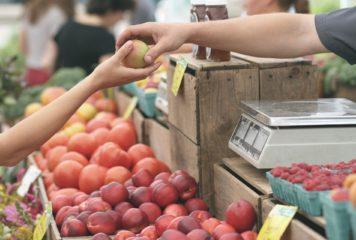 Souveraineté agroalimentaire : en parler c'est bien, le faire avec cohérence serait mieux !